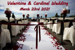 Valentine & Cardinal  Wedding @ Paradise Cove